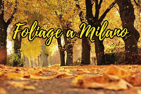 Autunno a Milano